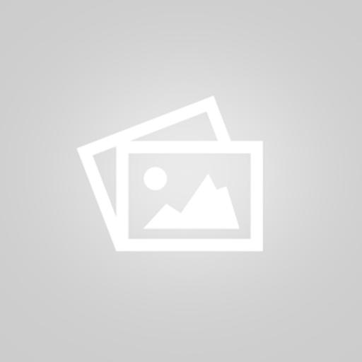 Conan le barbare / John Milius | Milius, John. Metteur en scène ou réalisateur